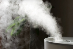3 Reasons to Use a Humidifier at Home Picture