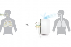 How To Find an Air Purifier that Will Ease Your Allergies Picture