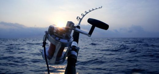 Say-yes-to-something-new-this-summer-deep-sea-fishing