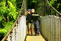 Costa Rica Guided Tour