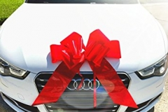 Guide to buy a car as a gift