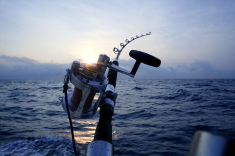 Say yes to something new this summer - deep sea fishing